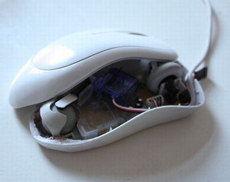 databot_mouse