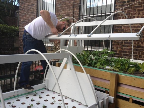 brooklyn-aquaponics-build