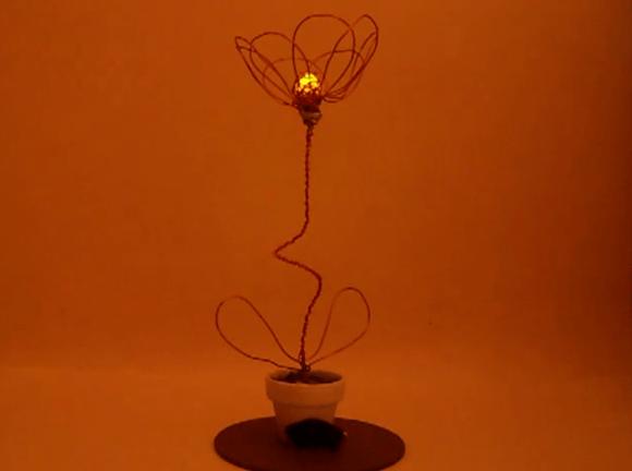 morse-code-flower