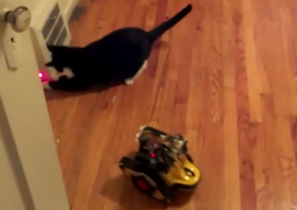 laser-toting-robot-taunts-house-cat