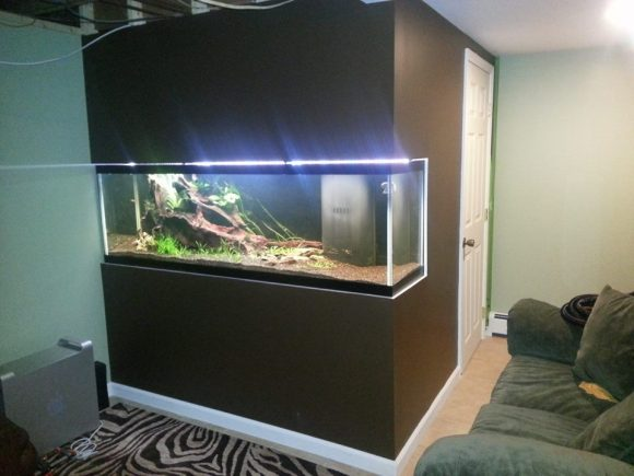 built-in-aquarium