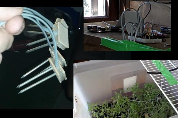 rpi-tomato-farming