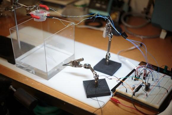 rig_circuit