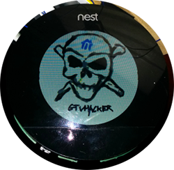 nest-300x293