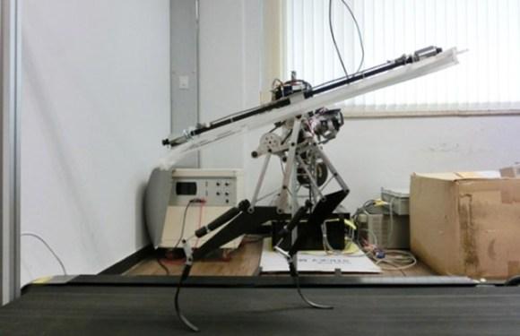 velociraptor-robot