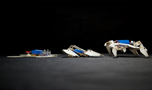 orgami-robots-harvard