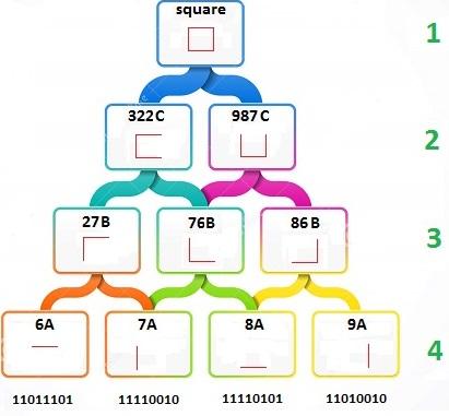 binary hierarchy