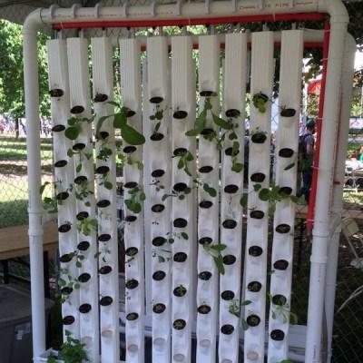 urban-gardening-thumb