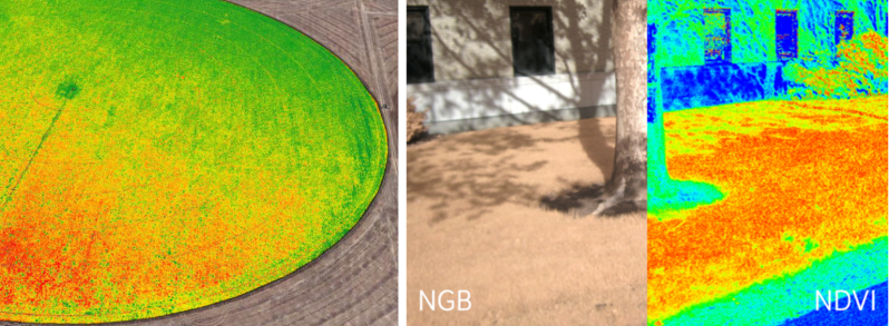 NDVI processed images. Left: crop growth as a green gradient blended with normal visual imagery [Source: Agribotix] Right: NDVI processing with plant growth as a red gradient [source: Public Lab Wiki]
