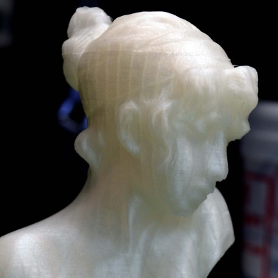 Sappho's Head printed at 0.02mm layer height. Click to embiggen