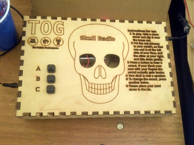 The TOG Skull Radio demo box