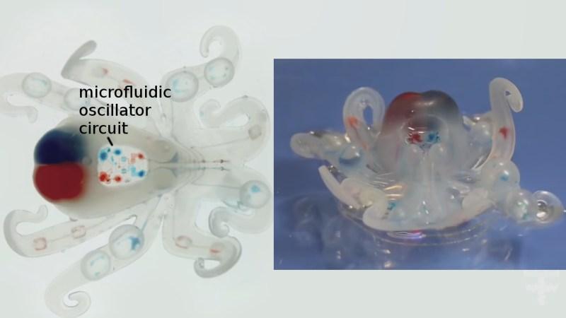 Octobot soft body robot