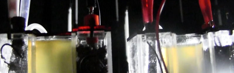 Raspberry Pi Radio Makes the Sweet Music of Bacteria   Hackaday