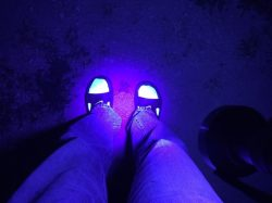 socks-fluoresce-under-uv-light-640x480