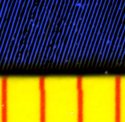 Close-up magnification of a 45RPM vinyl record, showing the audio waveform in each groove. The red lines are 1mm apart. Alex:D [Public domain], via Wikimedia Commons.