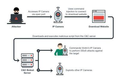 IoT Botnet | Hackaday