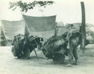 Sail-assisted centre-wheel Chinese wheelbarrows. (Public domain)