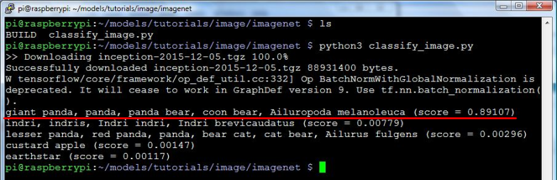 classify_image.py printing that it saw a panda