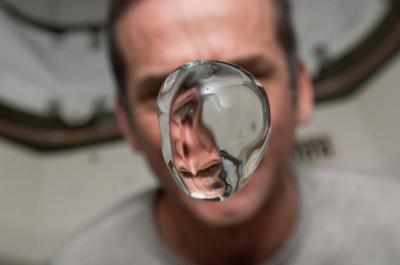 Chris Hadfield with water bubble in the ISS, Source NASA