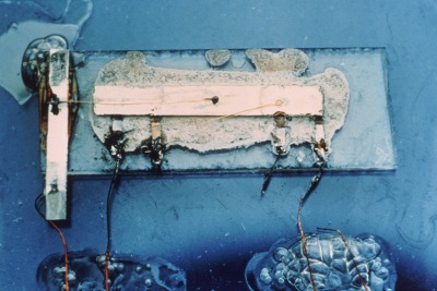 First integrated circuit built on a glass slide