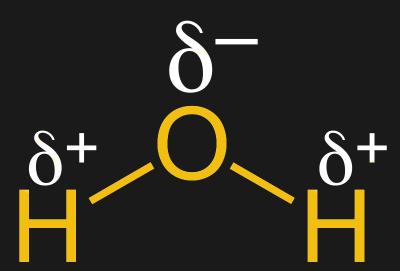 A dipole in a water molecule. Jü [CC0]