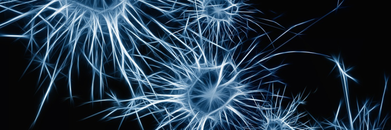 Tiny Neural Network Library In 200 Lines Of Code | Hackaday