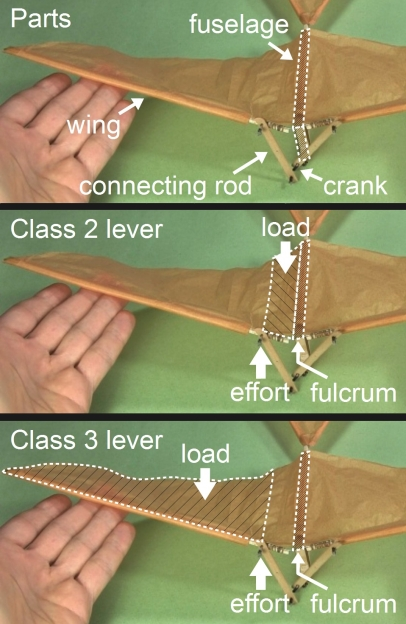 Ornithopter levers diagrams