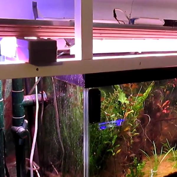 Aquarium Controller Starring Arduino Gets A Long Video Description