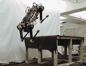 Cheetah 3 jumping 30 inches onto a desk