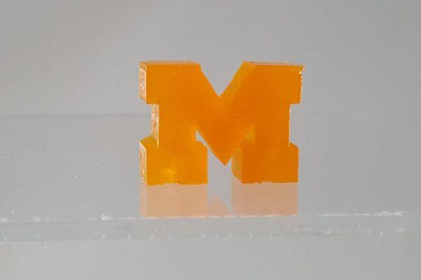 3D Printed U-M