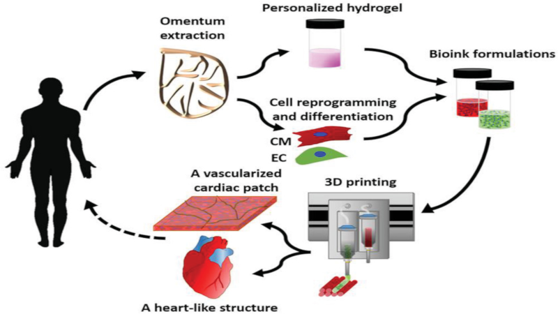 3D Printing a Real Heart