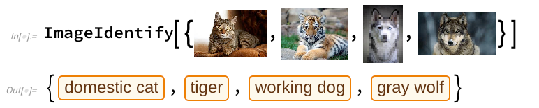 Distinguishing between predators, with Wolfram.