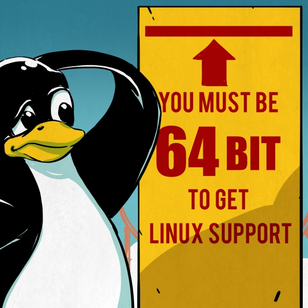 The Saga Of 32-Bit Linux: Why Going 64-Bit Raises Concerns