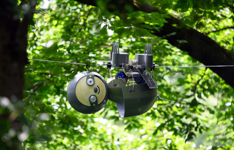 Slothbot faz jus a seu nome 12