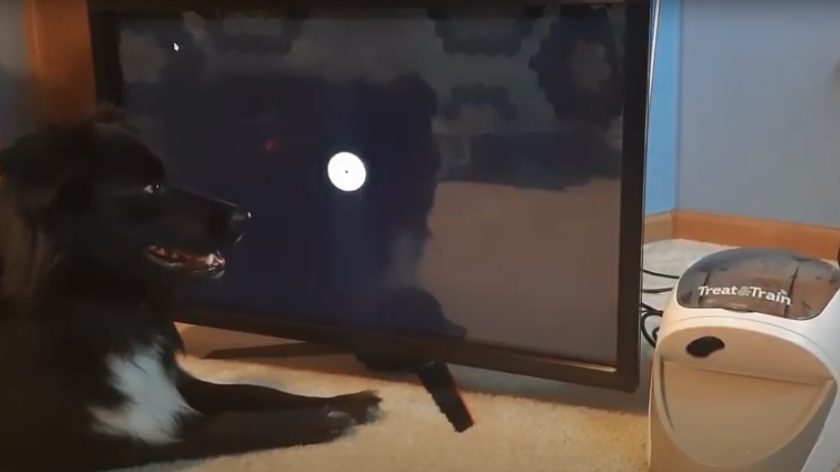 Using Open Source To Train Your Dog