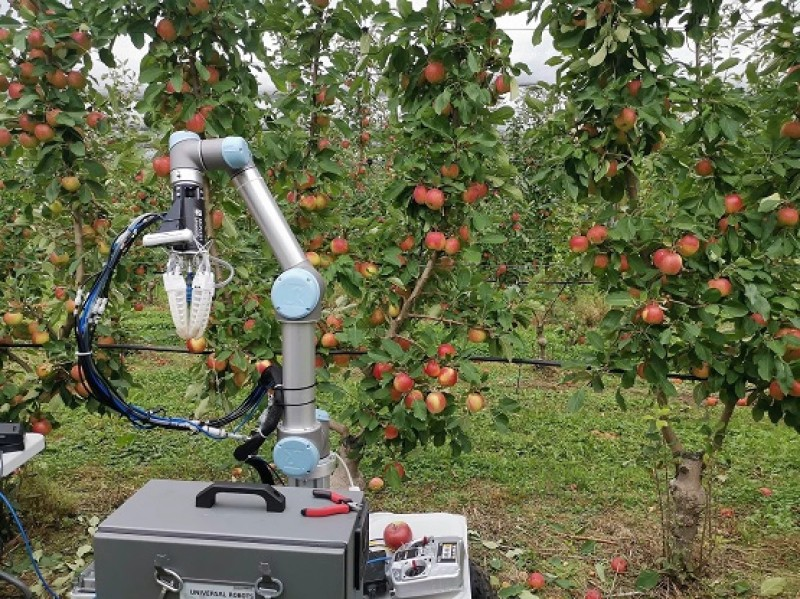 Apple-Picking Robot Stems From Labor Shortage
