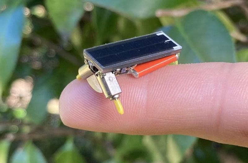 Tiny BEAM Robot Smiles Big at the Sun